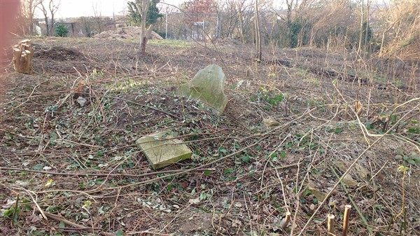 Cutting down trees, removing headstones, putting in roads to bury more people. Insanity. Camberwell Old Cemetery 2016.