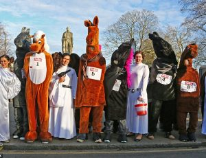 Lew's News: I'm MCing the Pantomime Horse Race and Other Stuff